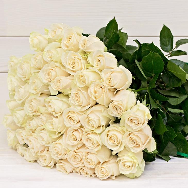 Картинка с белыми розами с днем рождения, праздником октября картинки